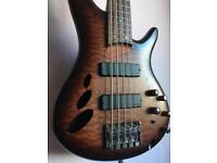 Ibanez semi-hollow 5 string bass