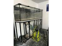 7ft Fish Tank with White enclosed cabinet