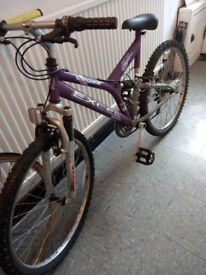 Selling Excel Vegas bike in great condition