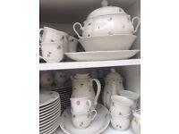 NEW & UNUSED Seltmann Weiden Marie Luise Porcelain LARGE Dinner Set Tableware VALUE £980 PERFECT