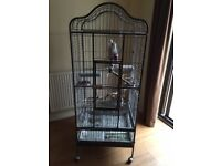Bird cage for sale /number below/