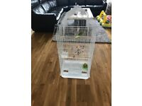 Cage and budgies