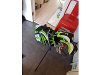 Full set woodworm clubs with self stand bag