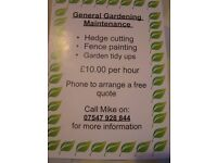 Gardening services-Dumfries-Hedgetrimming a speciality