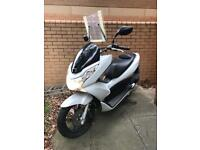 Honda Moped with knowledge board