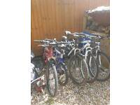 Mountain bikes job lot