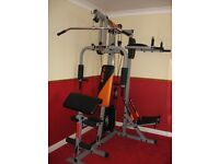 *V FIT ST - HERCULEAN COMPACT HOME GYM*