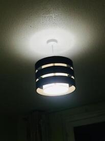 2 black ceiling lights