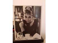 Audrey hepburn special collection videos