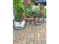 cheap ladys mountian bike
