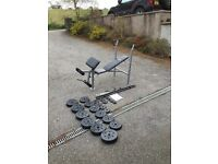 Fitness Bench & Weights/Bars