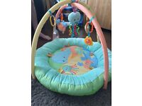 Mothercare Baby Ocean Play gym and Activity Turtle