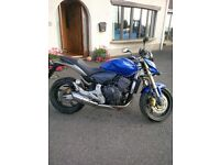 2007 Honda Hornet low mileage and in very good condition