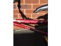 Child's piggy back bike
