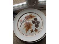 9 x Denby 'Cotswold' Dinner Plates