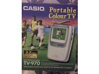 Casio hand held lcd tv