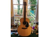 Takamine GS220-NS Solid top Grand Concert
