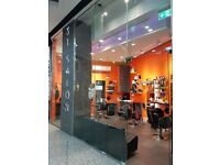 An experienced hairdresser for a salon in Harrow