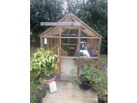Wooden greenhouse (timber frame)