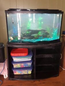 Fish tank for sale reduced price