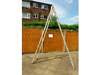 Ladders for sale. Great condition. Different sizes and different prices!