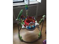 Rainforest Jumperoo- Perfect condition and very clean