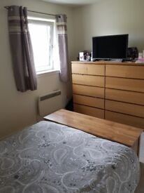2 bed council house looking for 3/4 bed