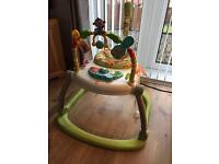 Fisher Price Jumperoo (minted condition)