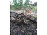 Beautiful Rockery logs