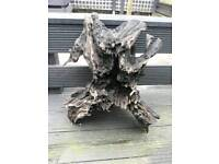 XL piece of aquarium bogwood