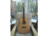 Tanglewood Acoustic TWR O folk guitar and soft padded case (new)