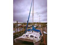 Heavenly Twin Catamaran - great family boat for sale