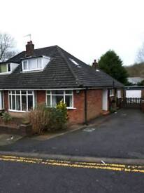 Room in lovely semi detached house