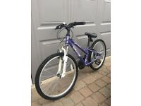 Girl's Mountain Bike - FREE
