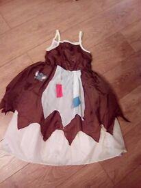 Cinderella costume age 6-8yrs..