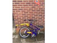 Adams foldable tag a long bike - kids - with flag