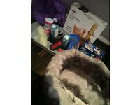 Scratching post, pet bed, tunnel, tray, food, milk, litter tray, bowls, brush, litter bag