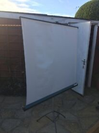 Bell & Howell projector screen