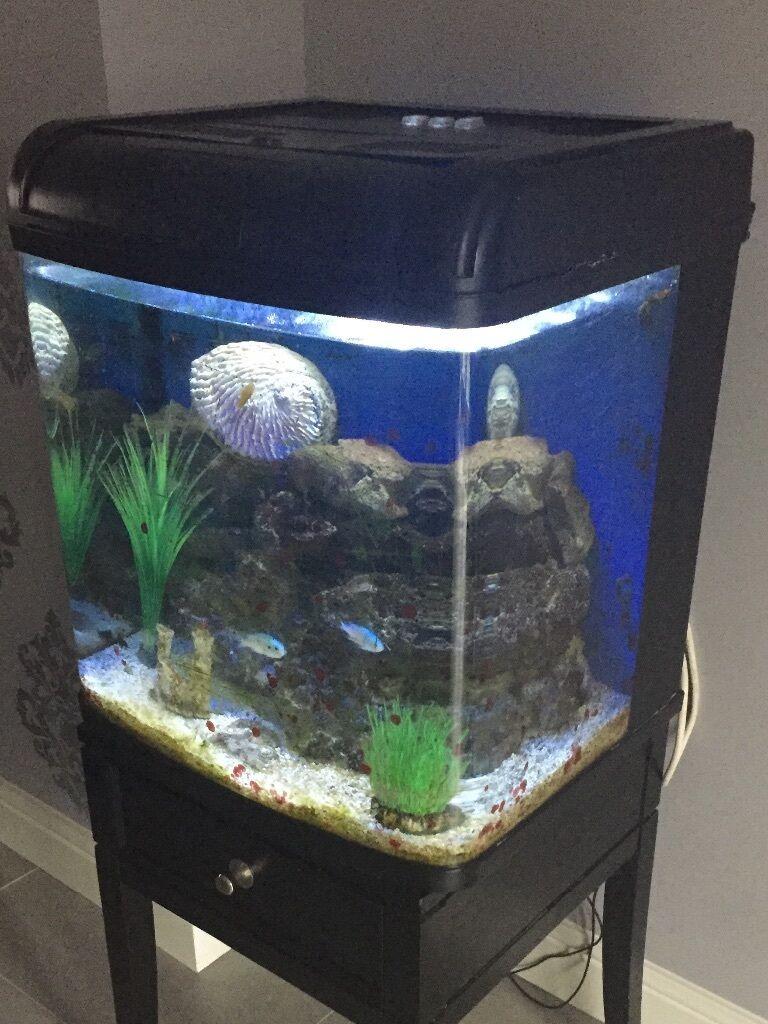 Resun aquarium fish tank - Resun Aquarium 95l Fish Tank