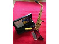Alt Sax Stewart Ellis with hard case and accessories. In perfect condition.
