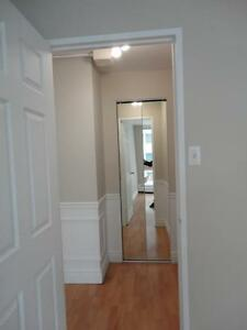 Beautiful 1BR  in downtown highrise, spacious and clean