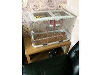 Pair of canarys and large cage in excellent condition £50