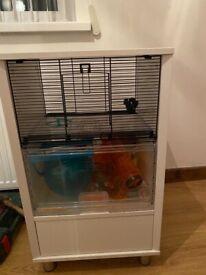 omlet hamster cage