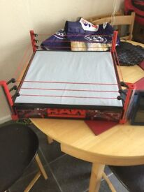 WWE authentic scale wrestling ring
