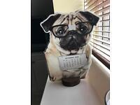Pug calender £10