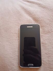 Samsung Galaxy S5 EE with case