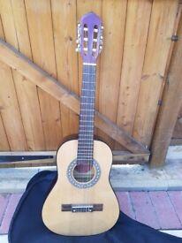 1/2 size caustic guitar