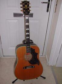 Gibson Firebird Custom Acoustic