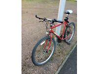 Cheap men's bike for sale