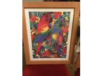 Colourful parrot framed picture